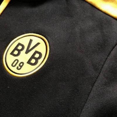 Футбольная толстовка Боруссия 2013-14 (black)