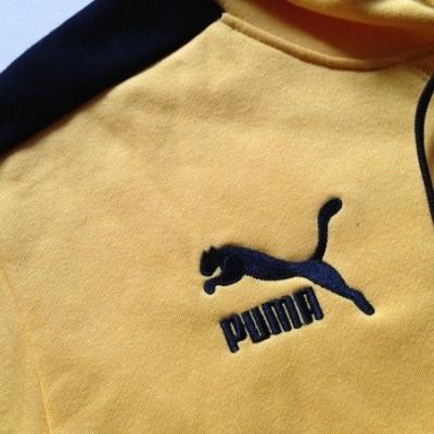 Футбольная толстовка Боруссия 2013-14 (yellow)